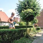 Meldorf Gartenarbeit